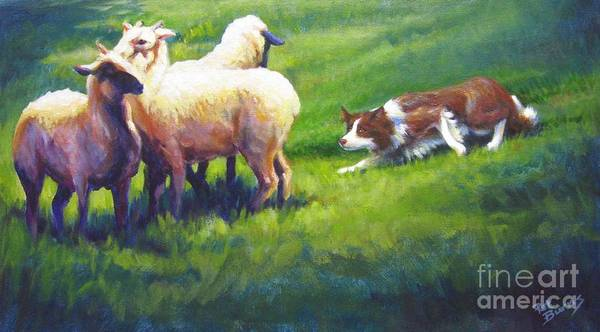 Border Collie Painting - Hold'em Sadie by Pat Burns