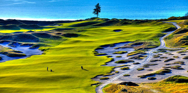 Photograph - Hole #5 At Chambers Bay Golf Course by David Patterson
