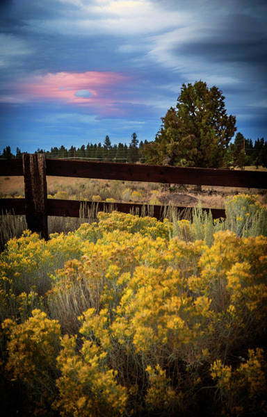 Wall Art - Photograph - Hole In The Clouds by Cat Connor
