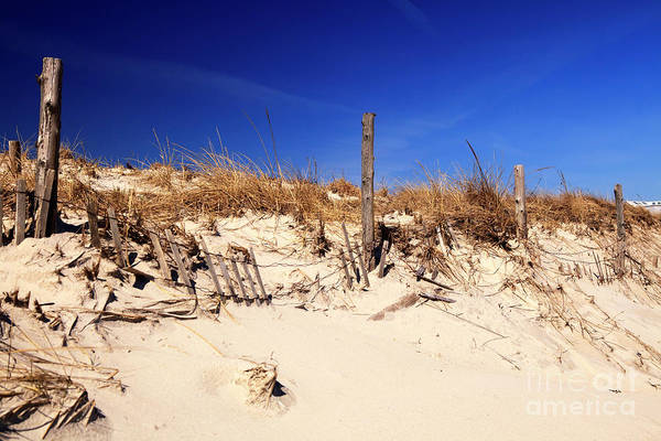 Holgate Beach Dune On Long Beach Island Art Print by John Rizzuto