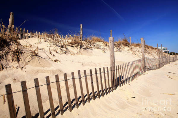 Photograph - Holgate Dune Fence On Long Beach Island by John Rizzuto