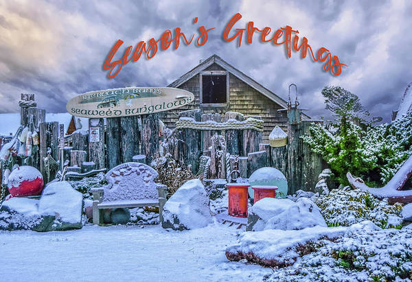 Photograph - Holiday Greetings From Nye Beach by Bill Posner
