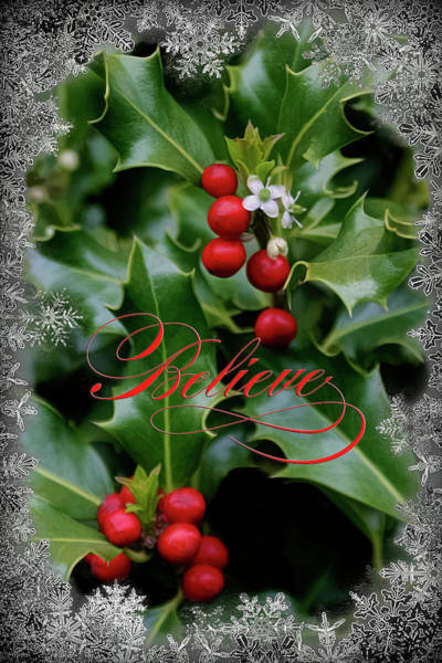 Photograph - Holiday Holly Believe by Wes and Dotty Weber
