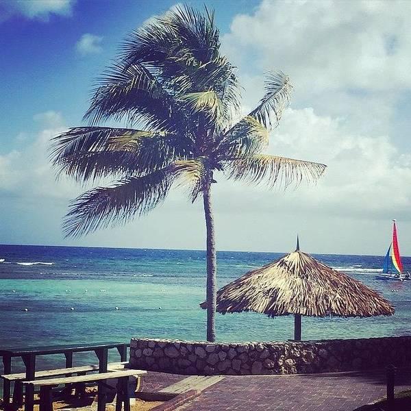 Jamaica Photograph - #holidayinresortjamaica #jamaica by Tammy Wetzel