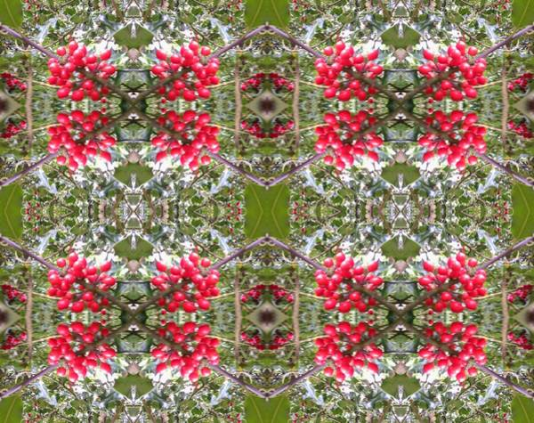 Photograph - Holly Berry 803 Multi Fractal by Julia Woodman