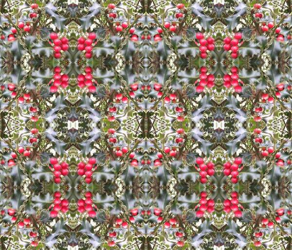 Photograph - Holly Berry 804 Multi Fractal by Julia Woodman
