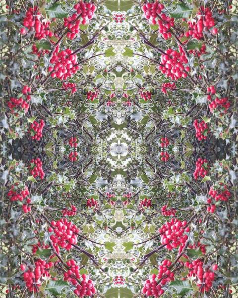 Photograph - Holly Berry Frieze Fractal 1 by Julia Woodman