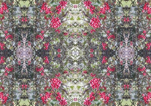 Photograph - Holly Berry Frieze Fractal 2 by Julia Woodman