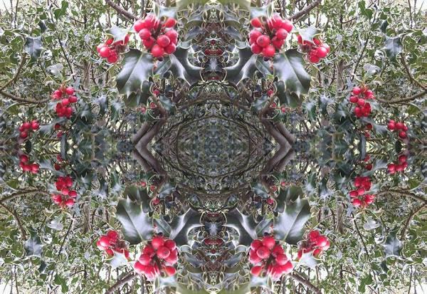 Photograph - Holly Berry Frieze Fractal 6 by Julia Woodman