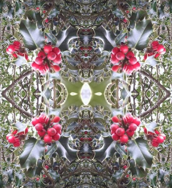 Photograph - Holly Berry Frieze Fractal 8 by Julia Woodman