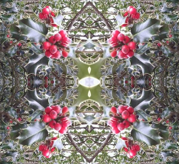 Photograph - Holly Berry Frieze Fractal 9 by Julia Woodman