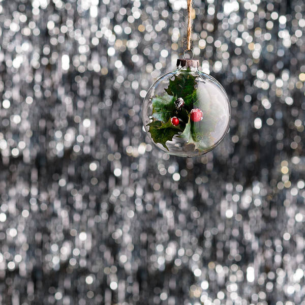 Photograph - Holly Christmas Bauble  by U Schade
