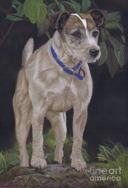 Painting - Holly by Karie-ann Cooper