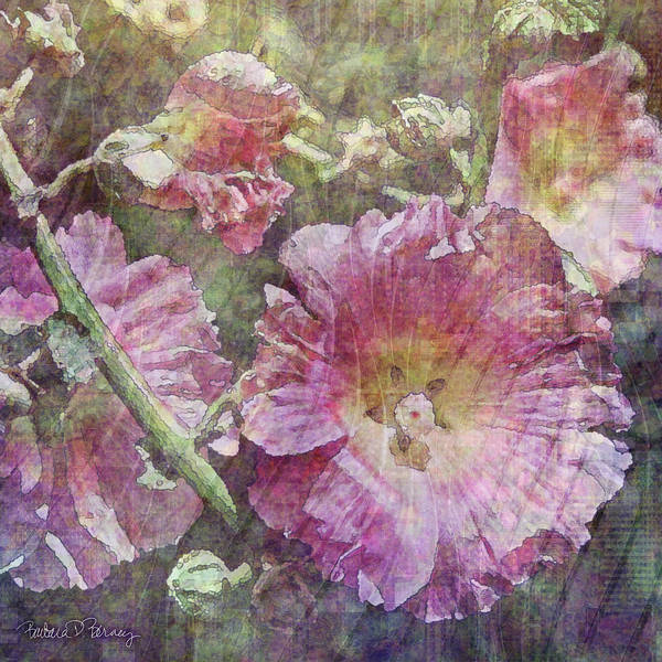 Digital Art - Hollyhocks by Barbara Berney