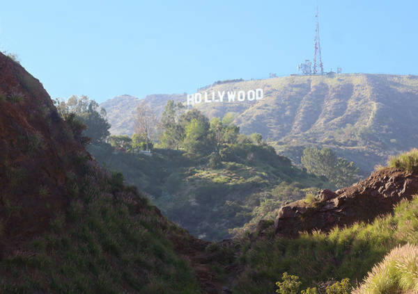 Photograph - Hollywood Sign by Viktor Savchenko