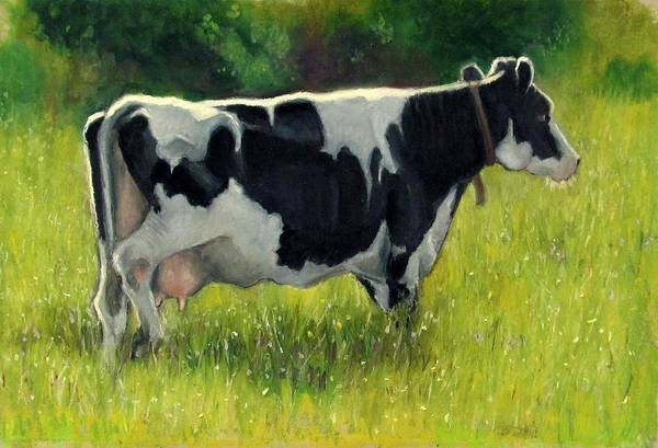 Wall Art - Pastel - Holstein Dairy Cow In Summer Pasture by Joyce Geleynse