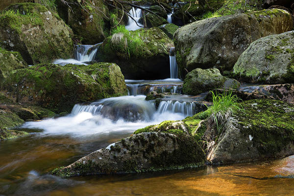 Photograph - Holtemme, Harz by Andreas Levi
