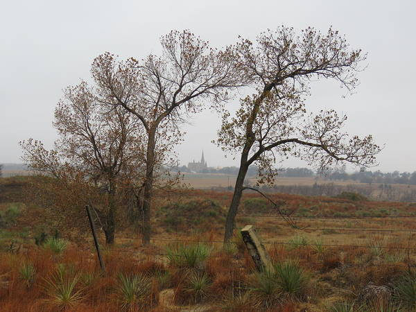 Photograph - Holy Cross Shrine In The Distance by Keith Stokes