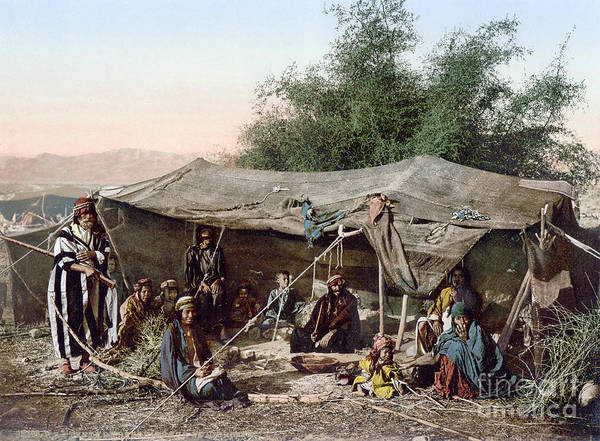 Photograph - Holy Land: Bedouin Camp by Granger
