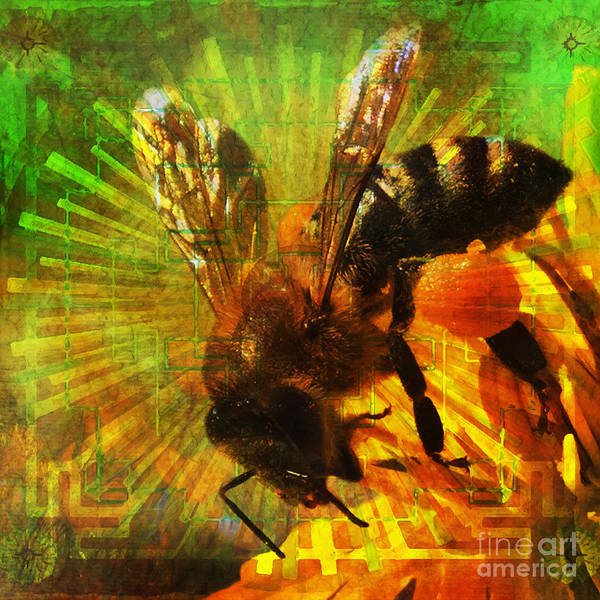 Digital Art - Homage To A Bee 2015 by Kathryn Strick