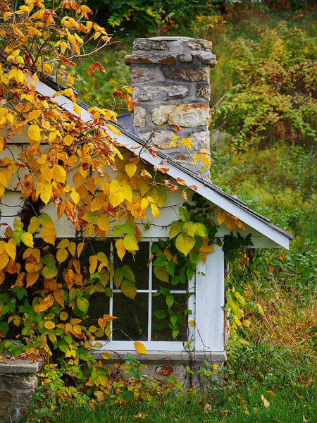 Photograph - Home In The Fall by Richard Reeve