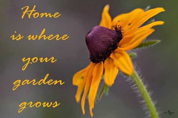 Wall Art - Photograph - Home Is Where Your Garden Grows by Mechala Matthews