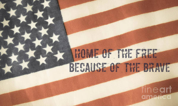 Photograph - Home Of The Free by Andrea Anderegg