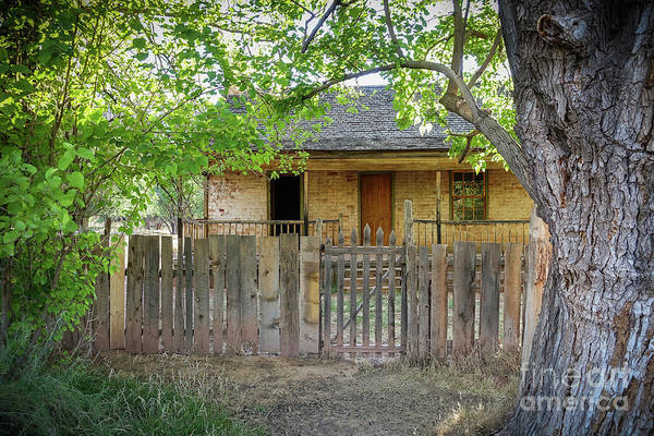 Frontier Photograph - Home On The Range by Wendy Fielding