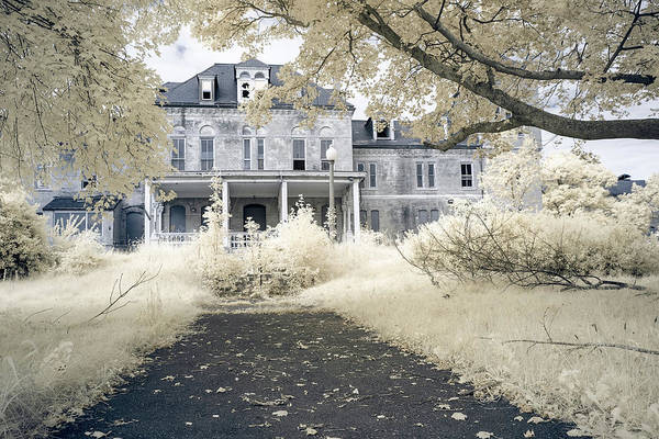 Photograph - Home Sweet Home by Brian Hale