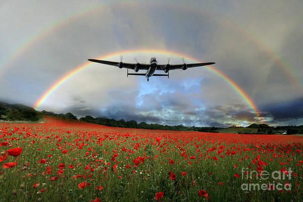 Poppies Digital Art - Home Through The Storm  by J Biggadike