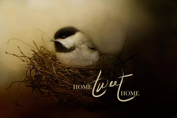Photograph - Home Tweet Home With Words by Jai Johnson
