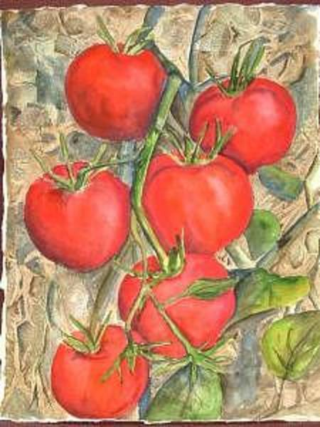 Painting - Homegrown by Diane Ziemski