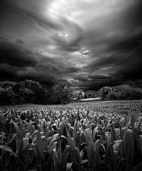 Wall Art - Photograph - Homesoil Stormed by Phil Koch