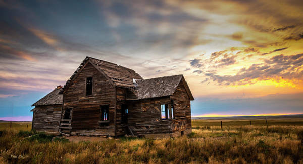 Photograph - Homestead by Philip Rispin