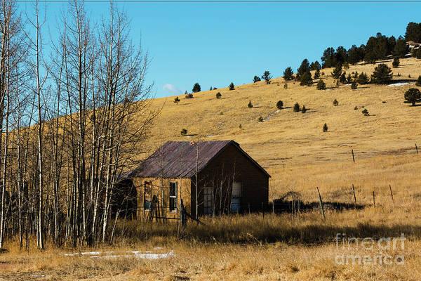 Photograph - Homestead by Steve Krull