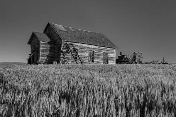 Photograph - Homestead by Thomas Hall