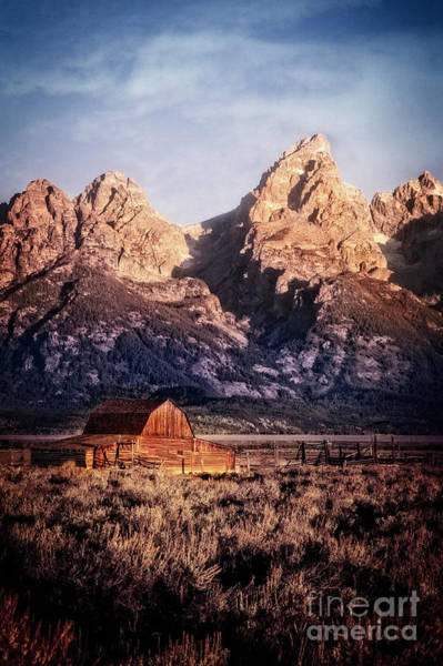 Photograph - Homesteader by Scott Kemper