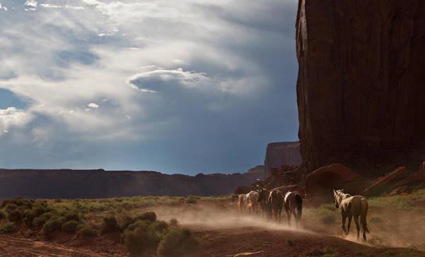 Photograph - Homeward Bound by Jonas Wingfield