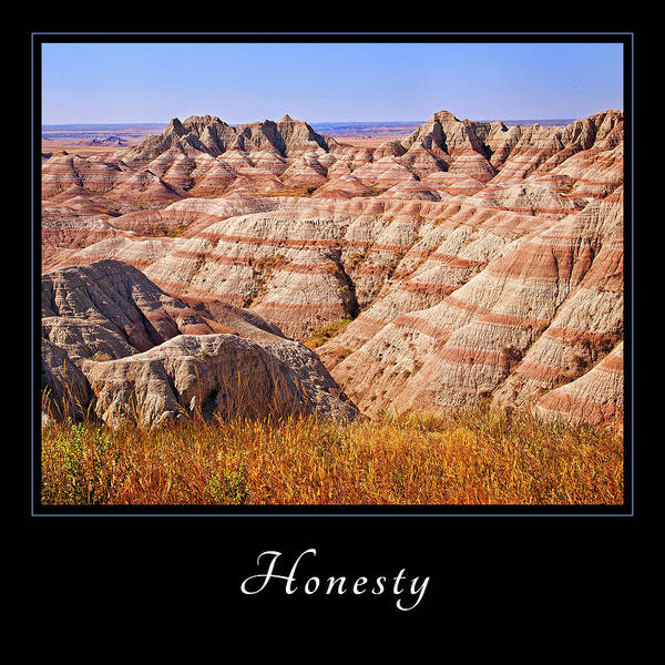 Photograph - Honesty 1 by Mary Jo Allen