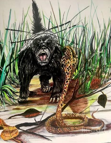 Mixed Media - Honey Badger by Mastiff Studios