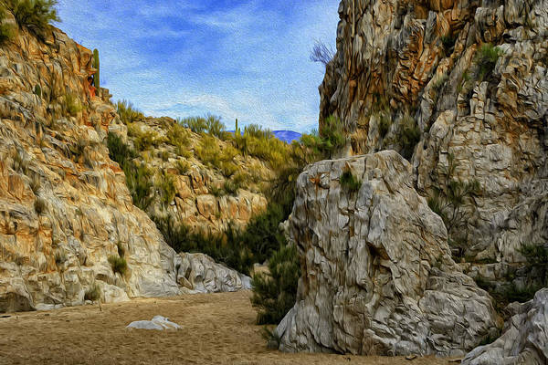 Photograph - Honey Bee Canyon Op51 by Mark Myhaver