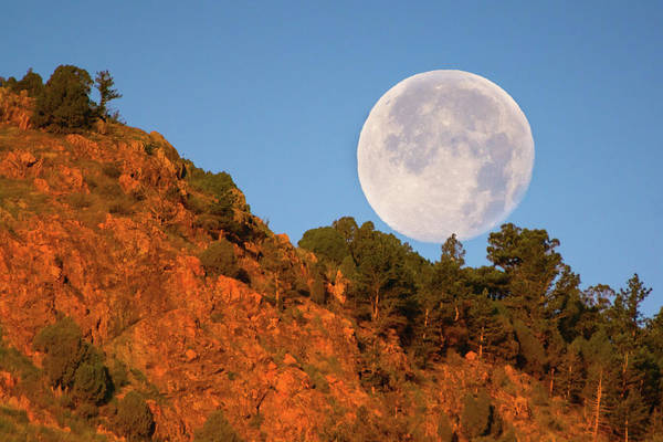 Photograph - Honey Moonset Over Red Rocks by John De Bord