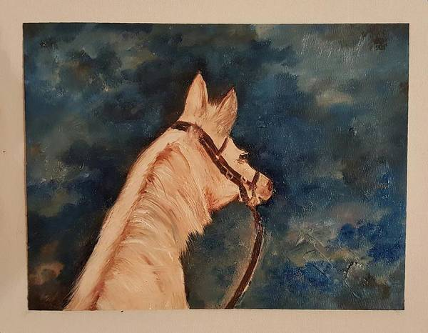 Honey Palomino Horse 28 Art Print