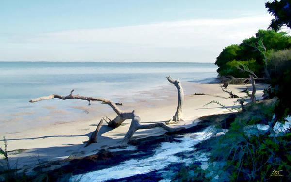 Photograph - Honeymoon Island by Sam Davis Johnson