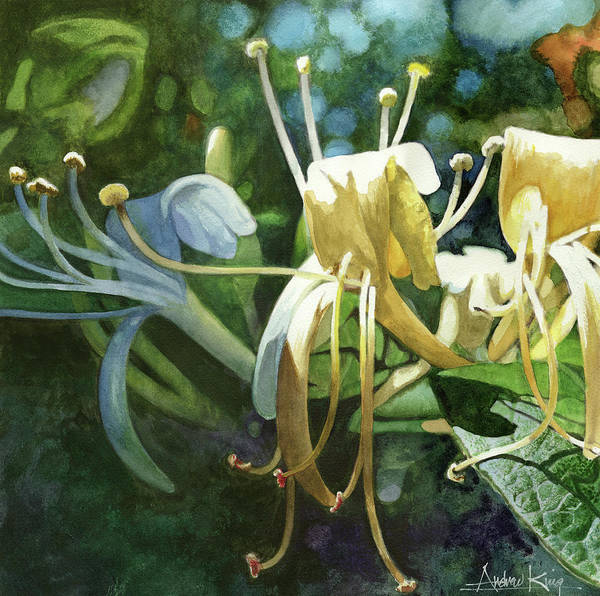 Painting - Honeysuckle Sun by Andrew King