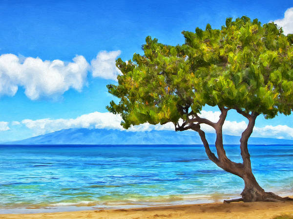Painting - Honokowai Beach Maui by Dominic Piperata