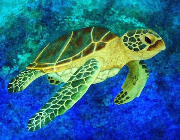 Honu Wall Art - Painting - Honolulu Honu by Patti Bean