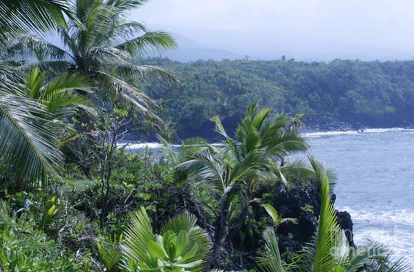 Photograph - Honomaele Near Mokulehua At Hale O Piilani Heiau Hana Maui Hawaii by Sharon Mau