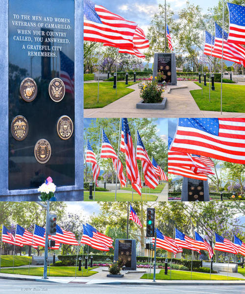 Photograph - Salute To Our Veterans by Brian Tada
