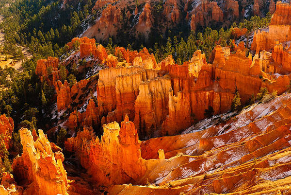 Photograph - Hoodoo Bryce by Harry Spitz